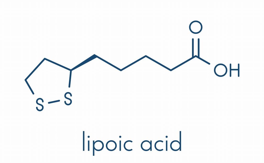 α-リポ酸配合